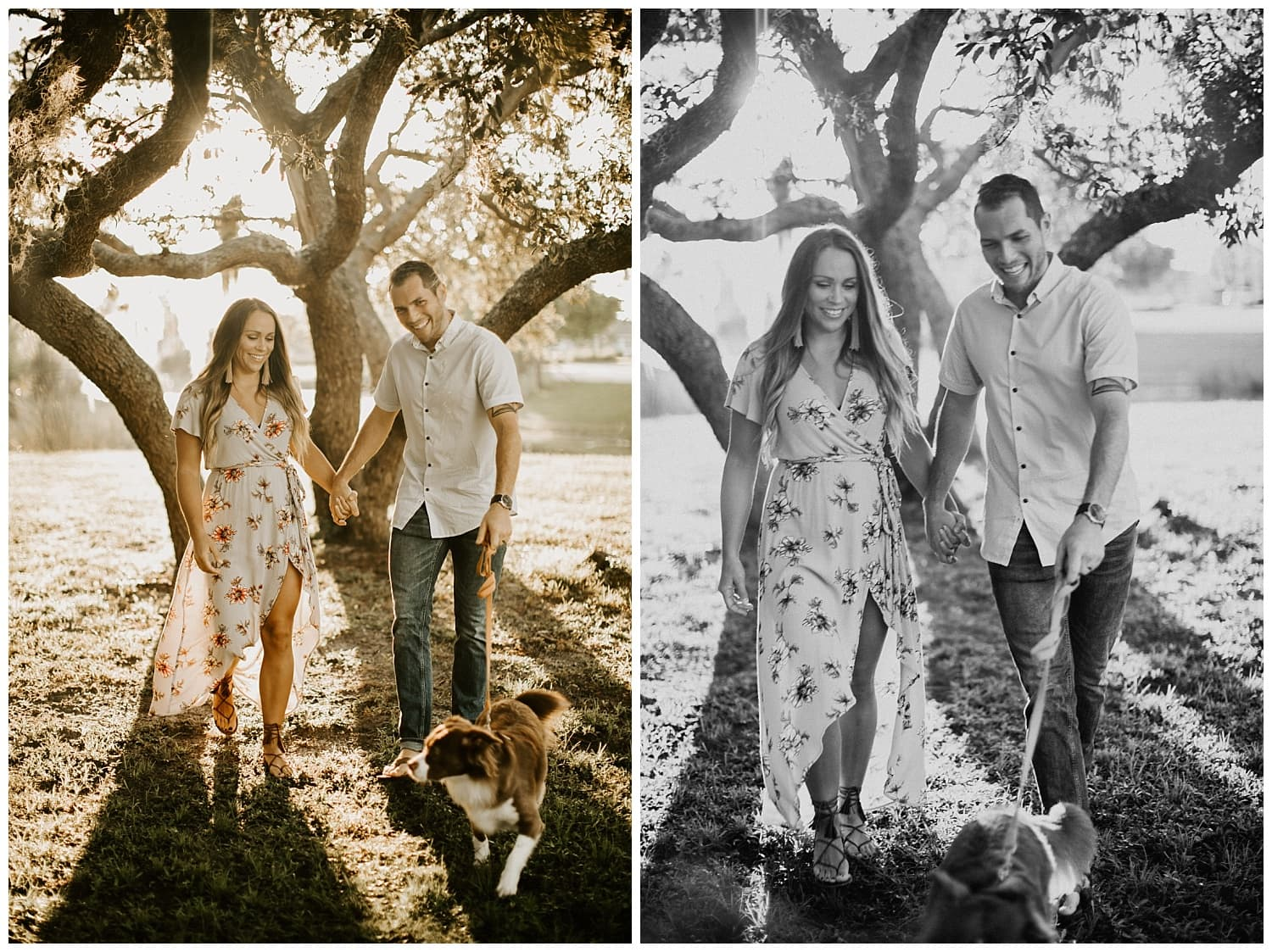 anniversary photos,border collie,couple walking their dog,couples photo session,couples photos,couples photoshoot,fur baby,palm beach photographer,port saint lucie botanical gardens,port saint lucie photographer,stuart photographer,