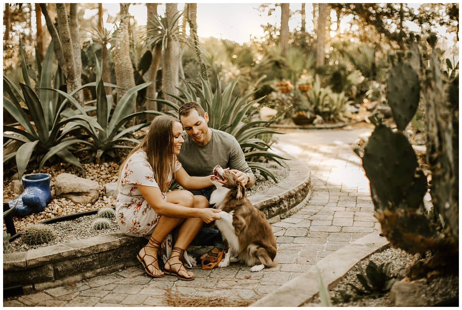 couple playing with their dog