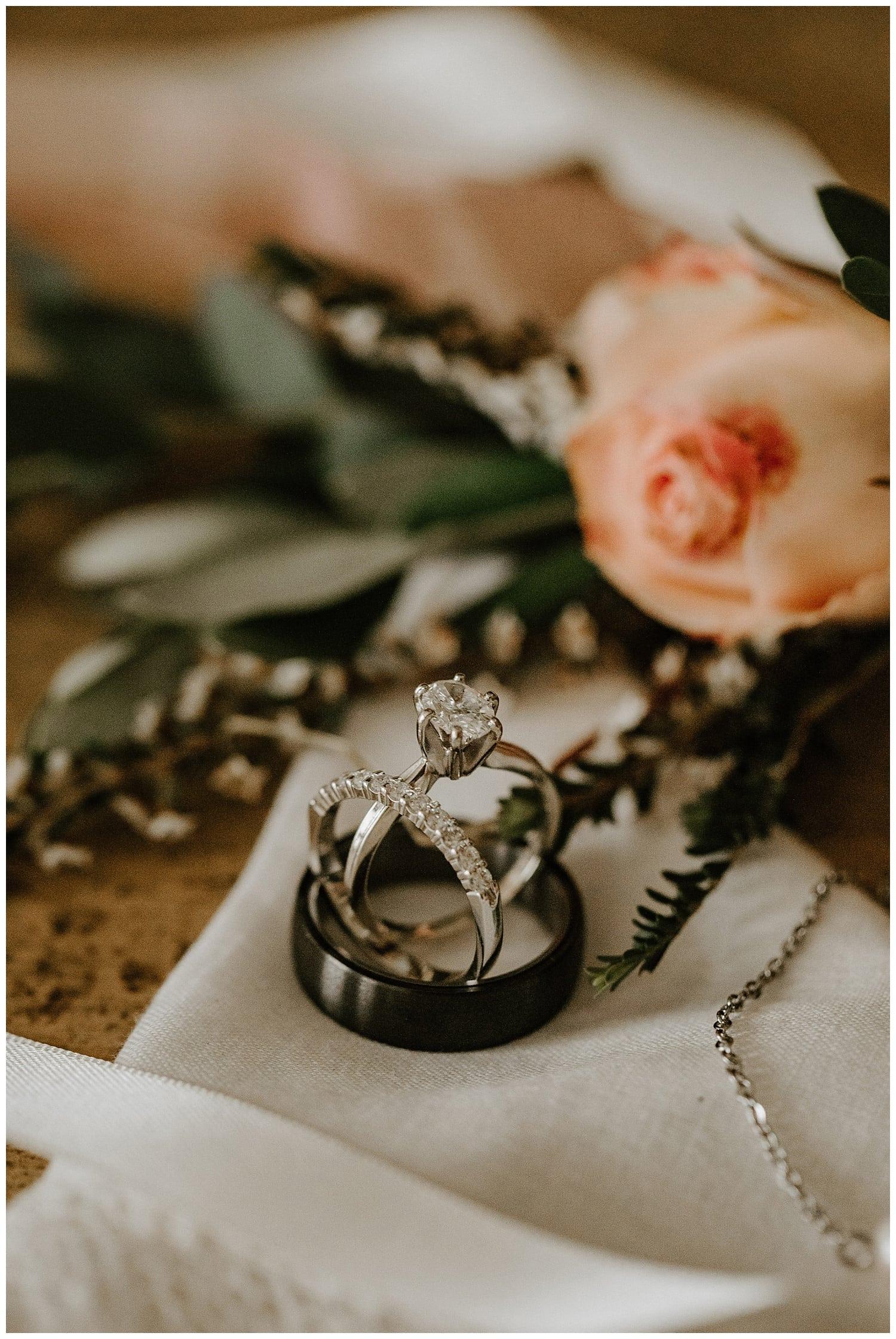 asheville elopement,asheville wedding photographer,carnegie resort wedding,carver's gap elopement,knoxville wedding photographer,nashville wedding photographer,roan mountain elopement,roan mountain wedding,