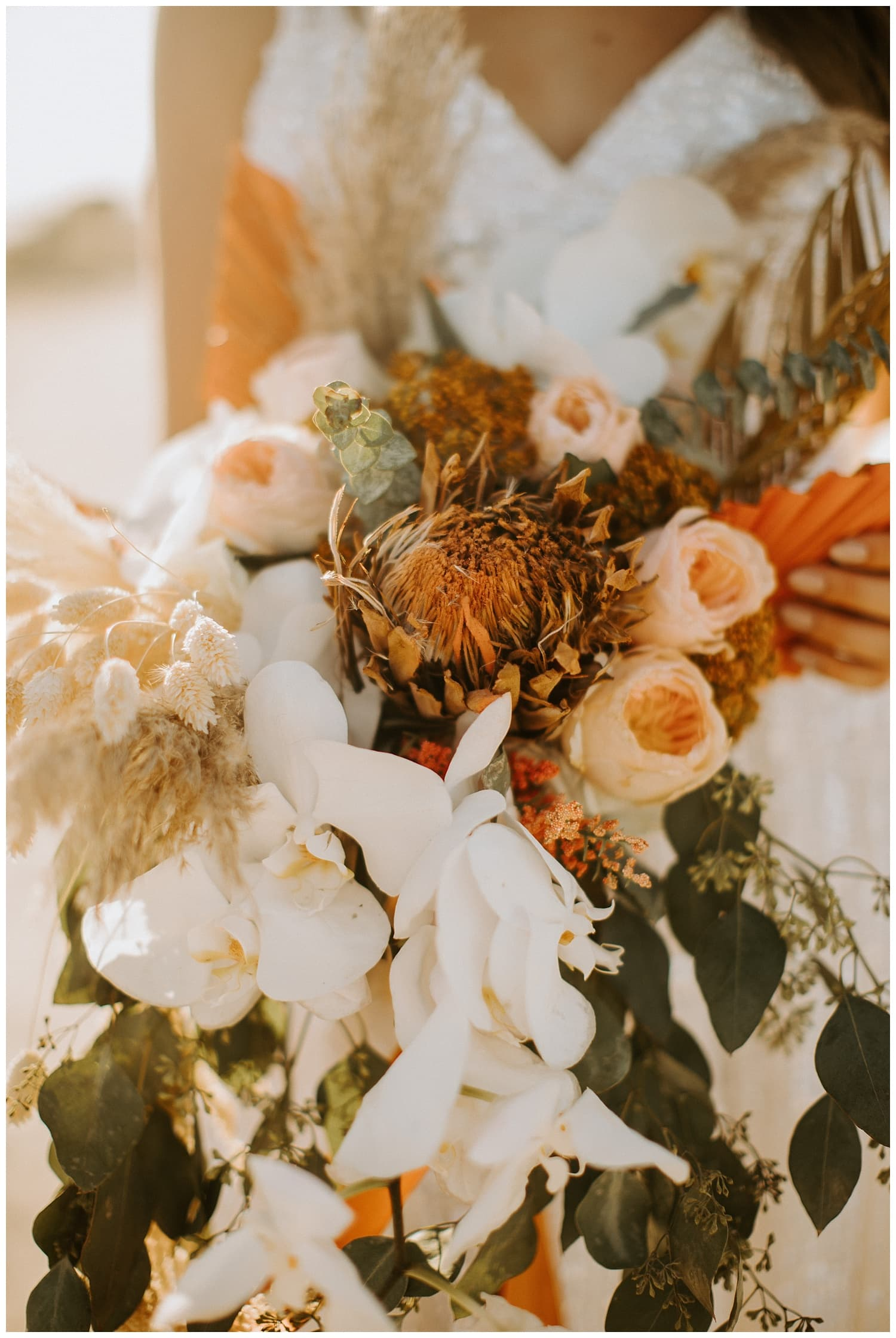 beachy bohemian bouquet,beachy bohemian florals,beachy boho bouquet,beachy boho florals,boho florals,california elopement,california wedding photographer,destination wedding,florida beach elopement,florida beach trash the dress,florida beach wedding,florida destination wedding,florida elopement photographer,florida keys elopement,florida keys wedding photographer,florida wedding photographer,fort lauderdale elopement,fort lauderdale wedding photographer,house of refuge,house of refuge elopement,house of refuge trash the dress,house of refuge wedding,jensen beach elopement,jensen beach wedding,jensen beach wedding photographer,key west elopement,laguna beach elopement,laguna beach wedding photographer,little mermaid dress,miami elopement,miami wedding photographer,orange boho florals,palm beach wedding photographer,pampas grass,pampas grass bouquet,rocky beach elopement,rocky beach wedding,sequin wedding dress,socal wedding photographer,south florida wedding photographer,sparkly wedding dress,stuart wedding photographer,