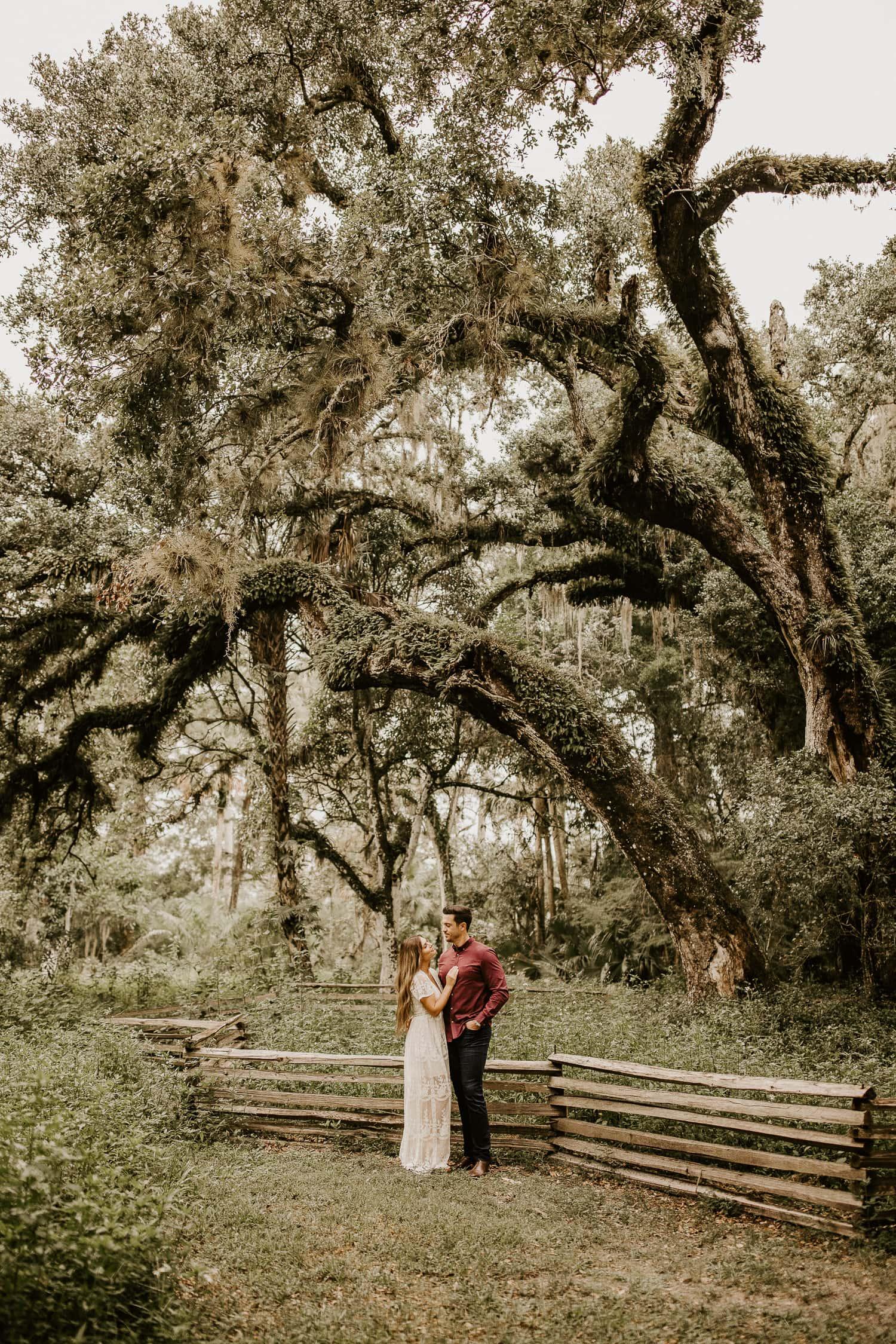 bride and groom standing under large oak tree at Riverbend Park.
